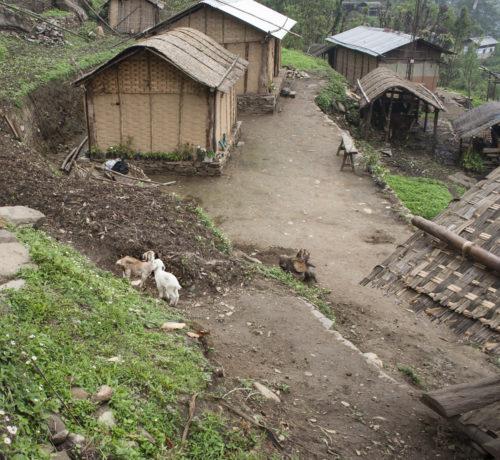Небольшой поселок лепча