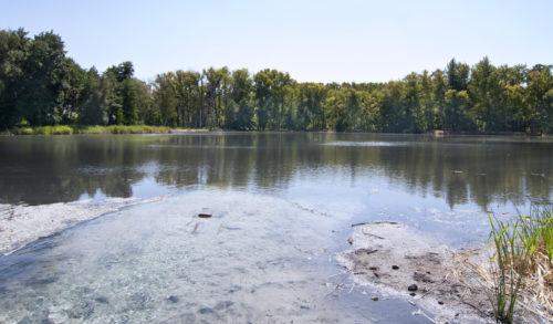 Вид с прогулочной дорожки вдоль озера