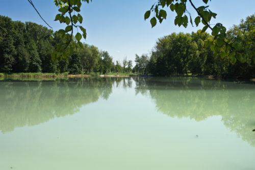 Парк у озера