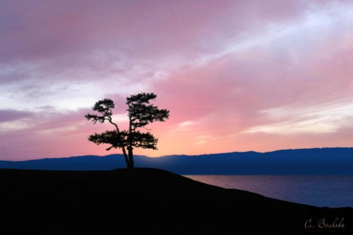 Остров Ольхон. Одиночество