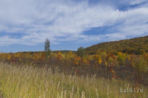 Краски осени в Жигулевских горах