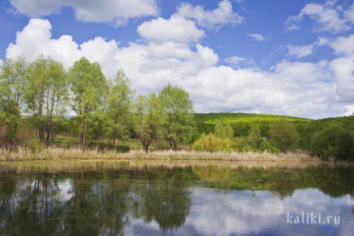 """Озеро Змеиное в национальном парке """"Самаркая Лука"""""""
