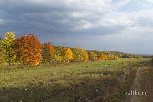 Осенний пейзаж. Долина в Жигулевских горах.