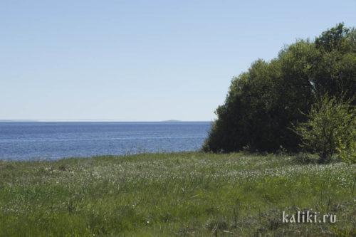Обычный остров