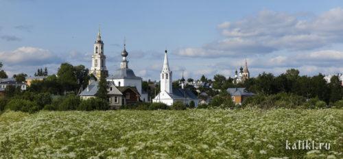 Панорама Суздаля со стороны Ильинского луга