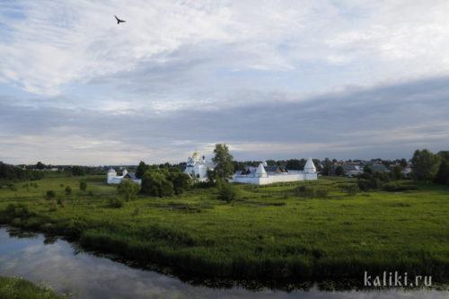 Вид на Свято-Покровский монастырь со стороны Спасо-Евфимиева монастыря