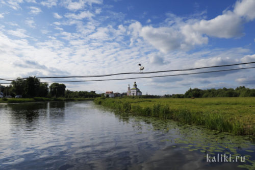 Ильинская церковь. Вид со стороны р. Каменки
