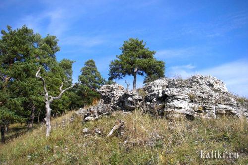 Каменистые отложения на южном склоне Монастырской горы