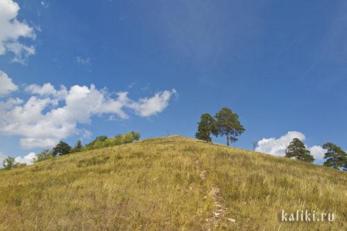 Южный склон Монастырской горы