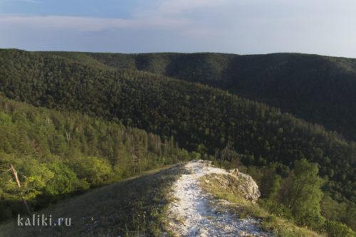 Вид на западную часть Жигулевского заповедника с горы Стрельной