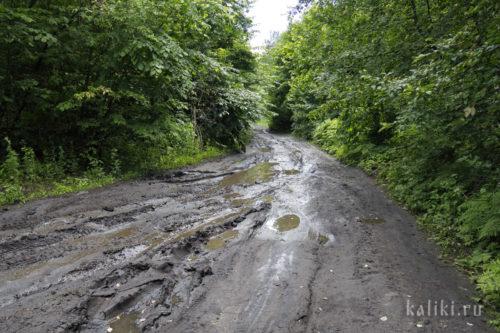 Дорога от Ширяево к Каменной Чаше после дождя