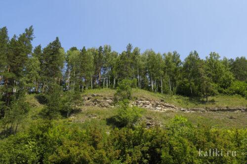 Каменные обнажения на склоне 1